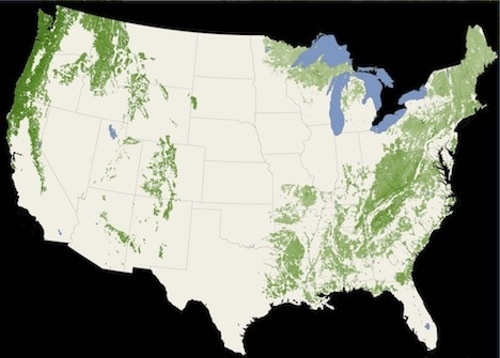 500x_nasa-satellite-map-trees-photo2