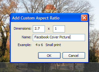 Creating a custom Picasa crop ratio for Facebook