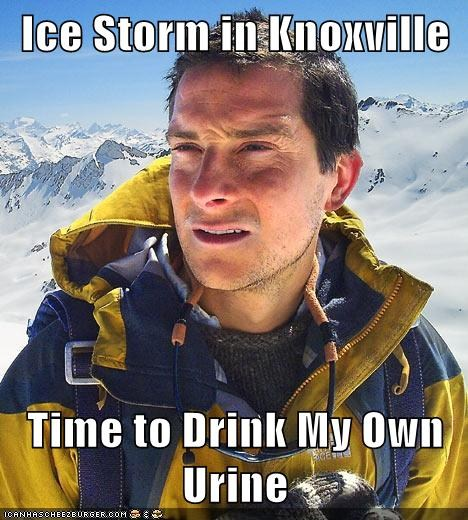 What Would Bear Grylls Do?